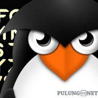 Tips Belajar Linux bagi Pemula, Tak sesulit yang Anda bayangkan